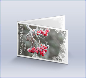 Individuelle weihnachtskarten online gestalten bei das for Weihnachtskarte foto online